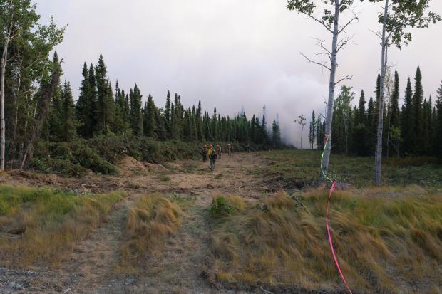 Fire crew working on the fireline