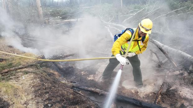 August 29 - Firefighter spraying water into a deep burning duff layer.