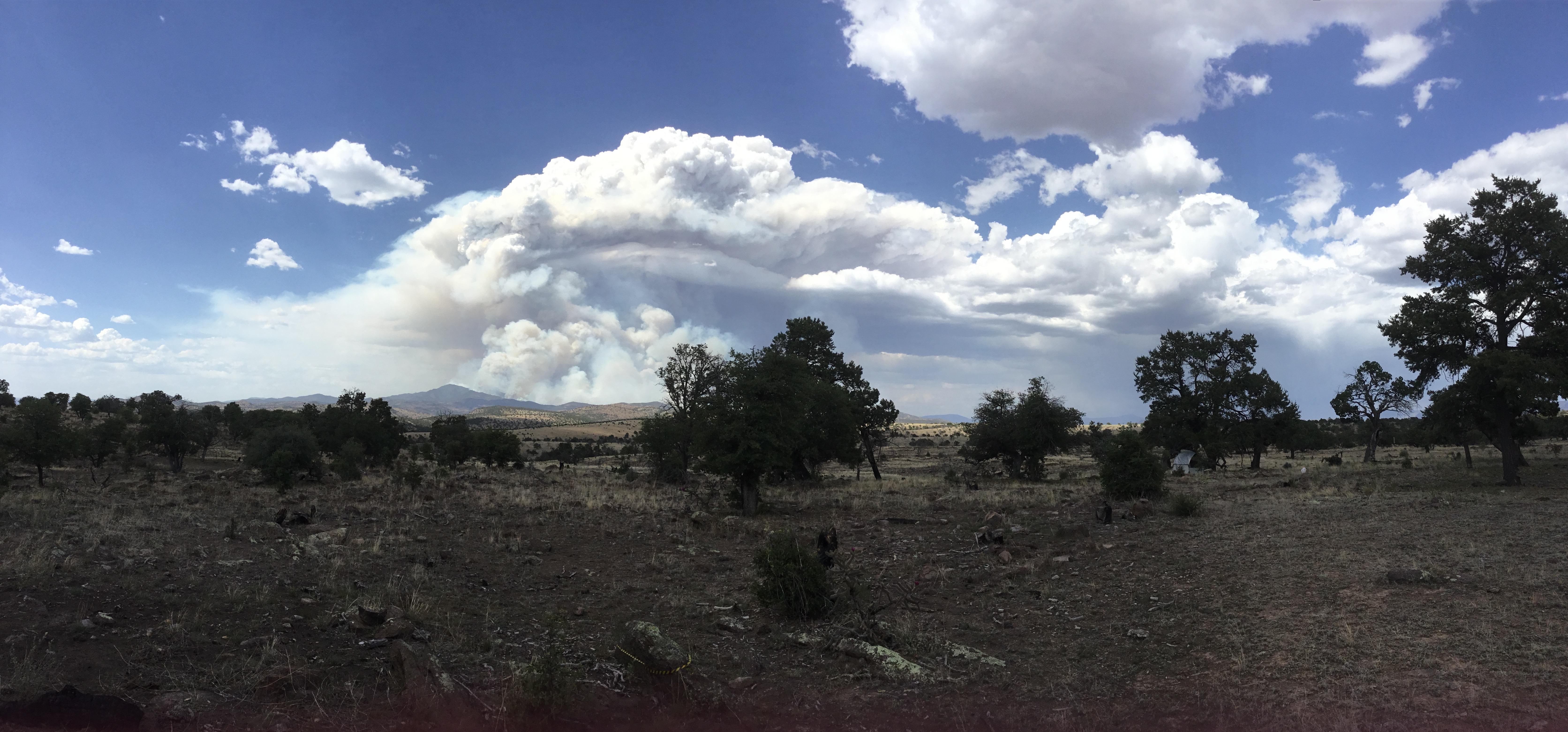 Daytime photo of a desert landscape. Blue sky with clouds. Brown and green landscape.  A mountain distantly in the background with a large column of grey and white smoke billowing up into the sky, expanding, and filling the sky with smoke.