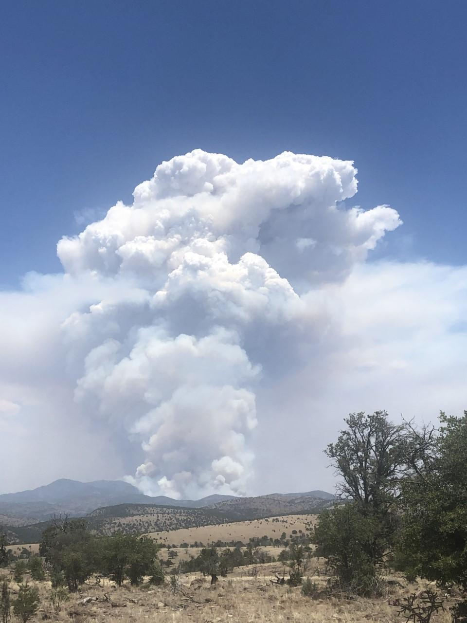 Daytime photo of a desert landscape. Blue sky and clouds. Brown hills covered in green shrubs with a mountain in the background with a large column of white smoke billowing up into the sky, expanding as it rises, filling the air with smoke.