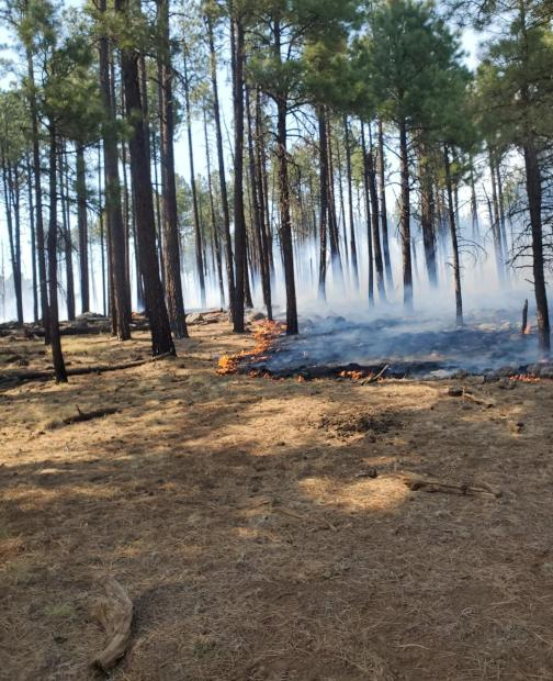 Boggy Creek Fire from 601 Road 5/24/21