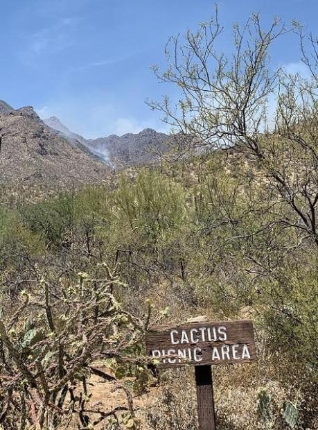 light smoke seen from Cactus picnic area