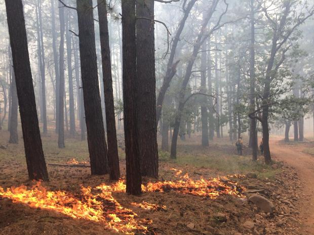 Fire effects after ignitions 8-17-19