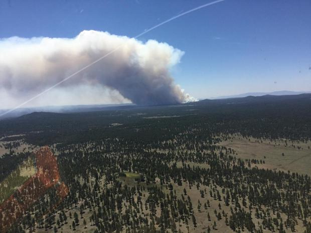 Smoke column of the Sunflower Prescribed Fire from the helicopter.