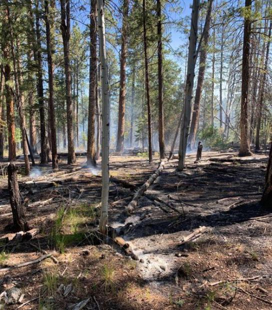 The Castle Fire has been slowly creeping and smoldering through mixed conifer forest. Photo taken July 17, 2019, by Dave Veater. Credit the Kaibab National Forest.