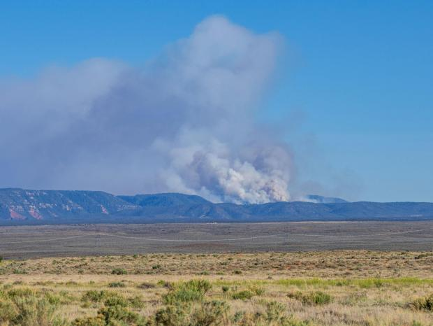 Smoke from Mangum Fire as seen from Fredonia, Ariz., on June 8, 2020. Photo by C.J. Adams. Credit Kaibab National Forest.
