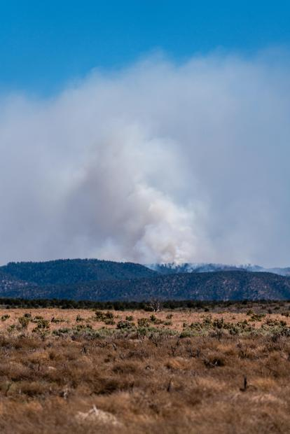 Smoke column from Mangum Fire as seen on June 9, 2020. Photo by C.J. Adams. Credit Kaibab National Forest.