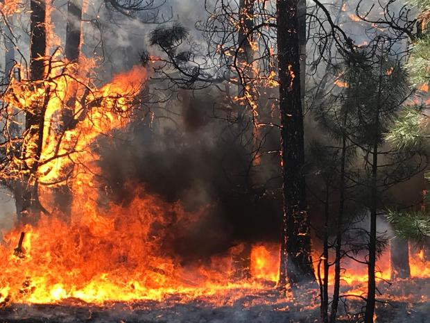 Extreme fire behavior on the Mangum Fire for June 12, 2020