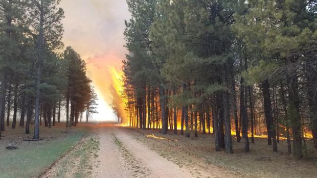 Fire activity on the North end of the Fire for June 14, 2020