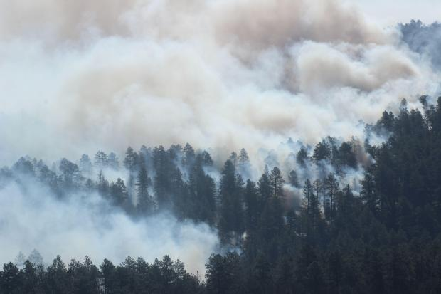 Mangum Fire Smoke In Forest for June 17, 2020  Photo Credit: Mike McMillan