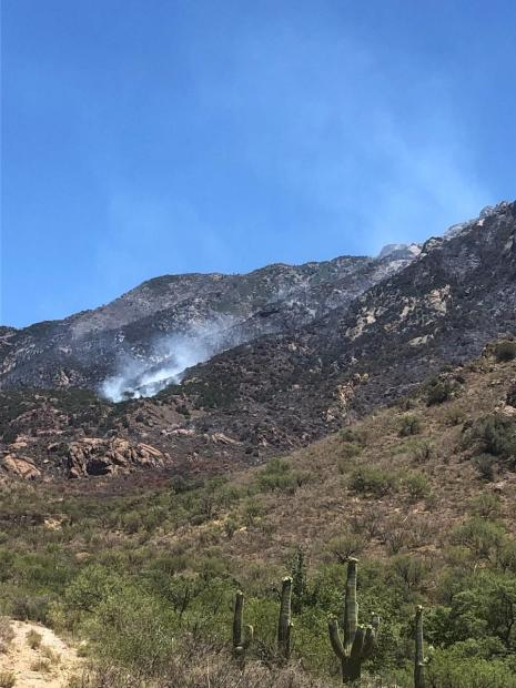 Smoke rises from a hot spot in Sycamore Canyon