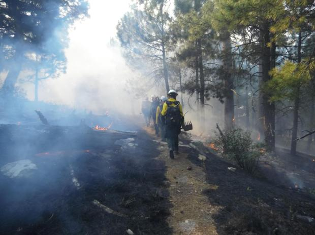 Firefighters dressed in yellow shirts and helmets walk down a traill with blackened soil on both sides of the trail.  Smoke hangs in forest like fog.