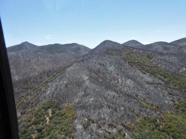 Photograph of the burned Reavis Ranch Trail (109) area taken from a helicopter.