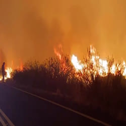 Large, wind-driven flames move along the roadside as firefighters light excess vegetation that could feed the main fire and threaten control lines