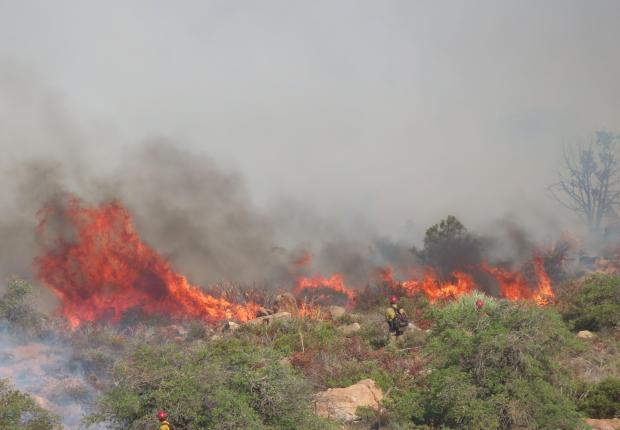 Burning vegetation during a burnout operation in the Oak Flat area on the Telegraph Fire.