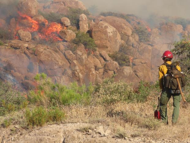 Firefighter monitoring burnout operation in the Oak Flat area on the Telegraph Fire,