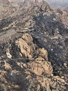Portions of Arizona Trail Burned Over by Telegraph Fire
