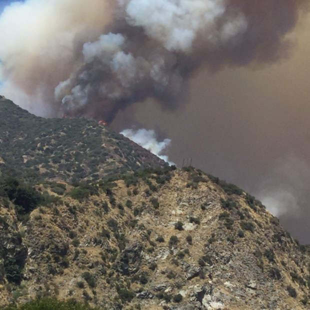 Hot, Black smoke rises from the Dam Fire