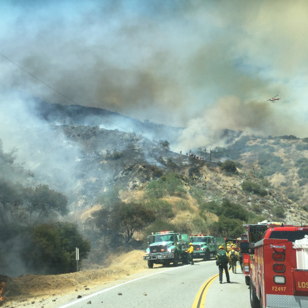 Forest Service Fire Engines work along the fires edge