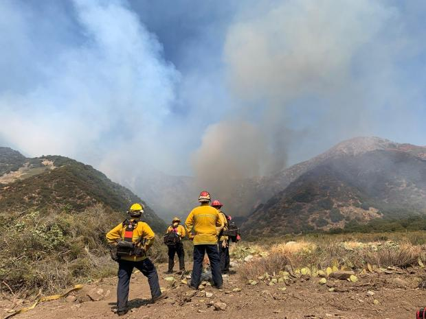 firefighters standing on hillside monitoring fire