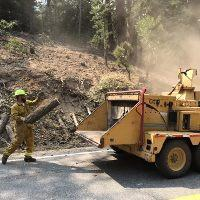 Small Trees are chipped along Highway 38 while preparing fire lines in the Angelus Oaks Area