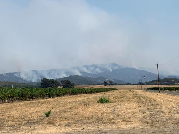 LNU Fire backing down western slope of the BLM Cedar Roughs Wilderness from Pope Valley. (Jeff Tunnell/BLM)