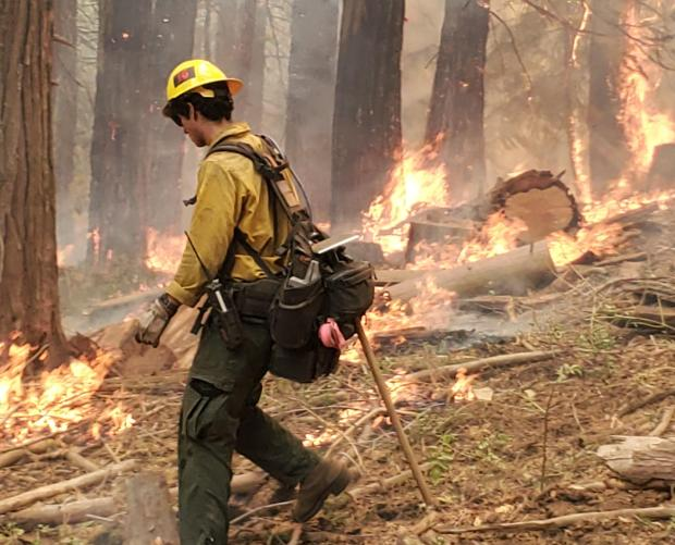 Fire Fighter using fire to fight fire