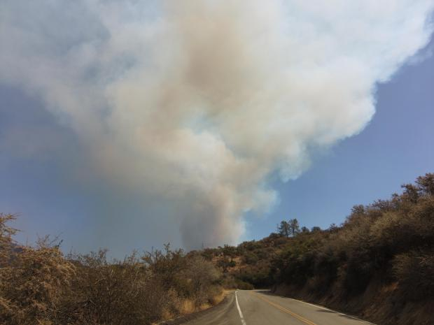 9_4_2021 photo of smoke from the French Fire_ Firing Operations near Cedar Creek on the northwest side of the French Fire. Photo by Jose Acosta.