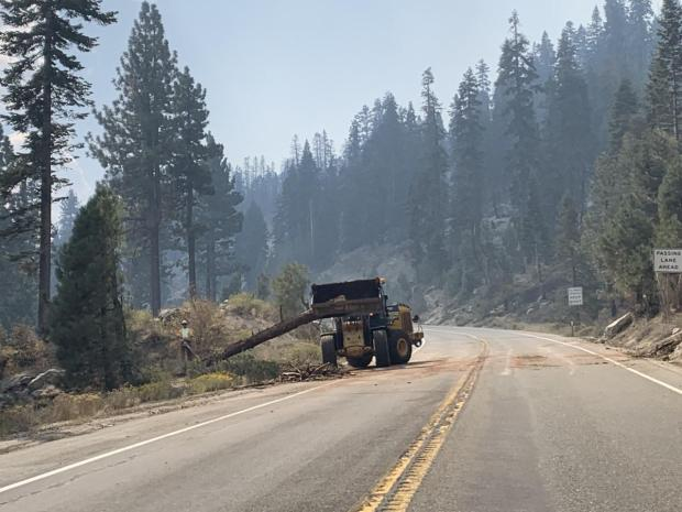 Equipment along the edge of the road picks up a log to remove it from the road.