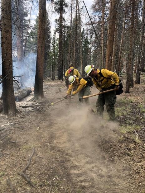 Photo courtesy Texas A&M Forest Service of their crew working to dig line with hand tools on the Dexter Fire