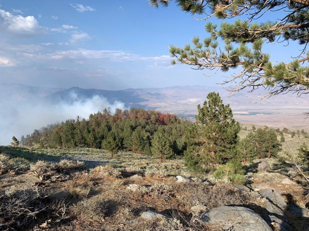 Smoke from the Glacier Fire is seen rising above the forested ridgeline near Big Pine Creek on the Inyo National Forest.