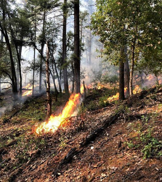 Pile Burning near Happy Camp the week of 12/5/2019