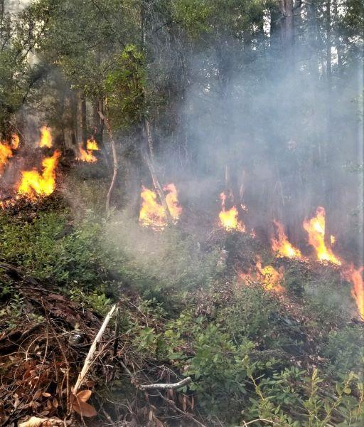 Happy Camp pile burning the week of 12/3/2019