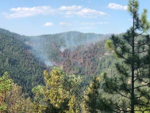 An evening picture of the Little Soda Fire on July 29