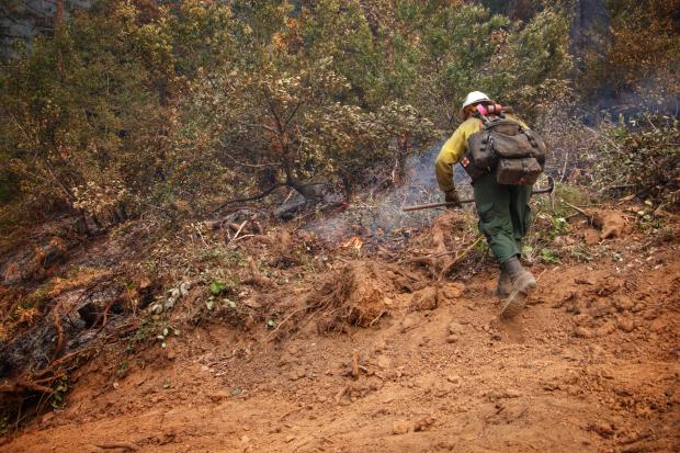 v9/14/20 Firefighter from Galice Wildland Fire Module securing the containment lines edge near Goodwish road, Dwight Creek and Almost Heaven off Hwy 199