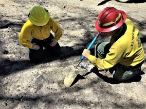 Photo Showing BAER Specialists Assess Changed Soil Properties in wildfire burned area