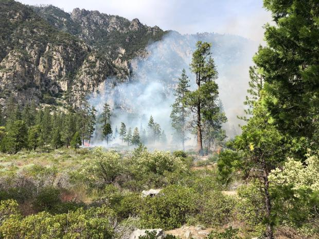 Smoke rises from a manzanita and conifer woodland in front of a granite cliff.