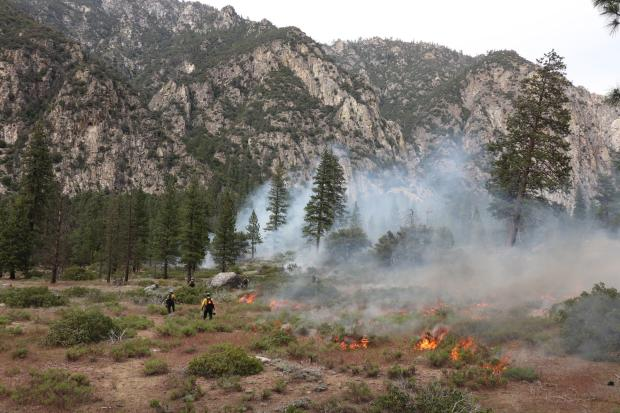 Firefighters in a field of manzanita and sparse conifers with pockets of active flame