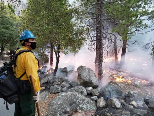 A firefighter from Arrowhead Hotshots monitors the Cedar Central Prescribed Burn along the Roaring River Trail in Kings Canyon National Park