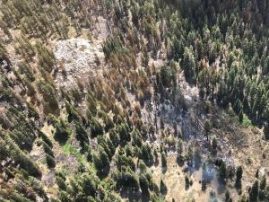 Lost Fire 100% Contained 7.19.2021