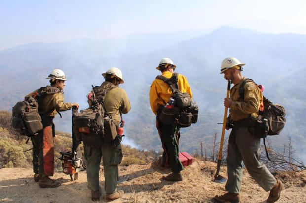 4 Truckee Hotshots stand on the edge of Mineral King Road looking down into river bottom. Smoke Rising