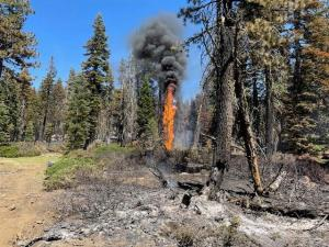 Hot spots in the fire continue to burn