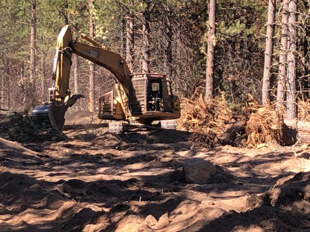 A yellow tracked excavator moves limbs with its bucket with pine trees in the background