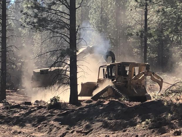 a bulldozer drags or skids trees with a forest in the background