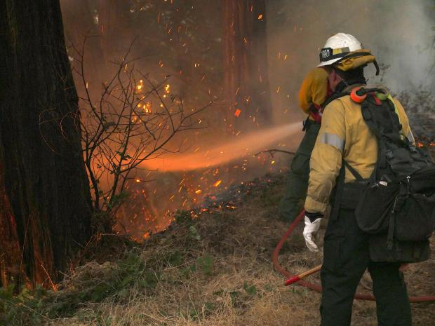 Two firefighters stand by some large trees and one of them sprays water with the hose on flames below the trees.
