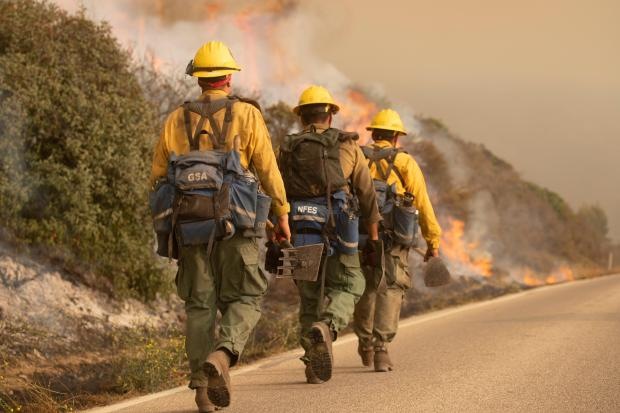 Three firefighters holding tools, wearing yellow shirts and helmets and carrying packs, walk in a line towards a fire in the distance.
