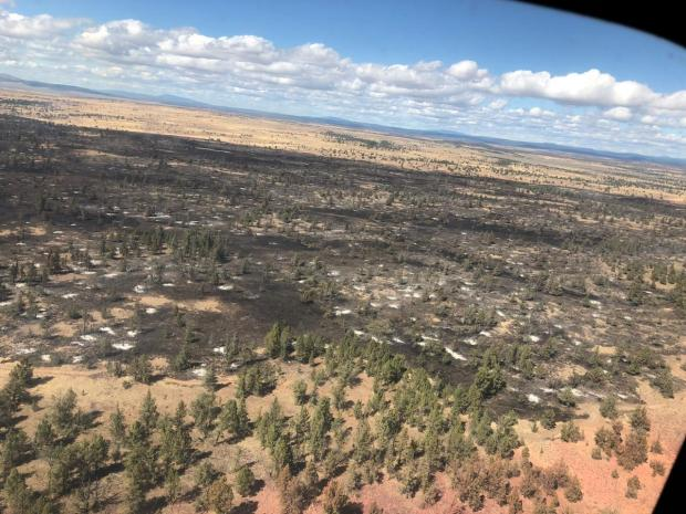 Ariel view of the Lone Fire