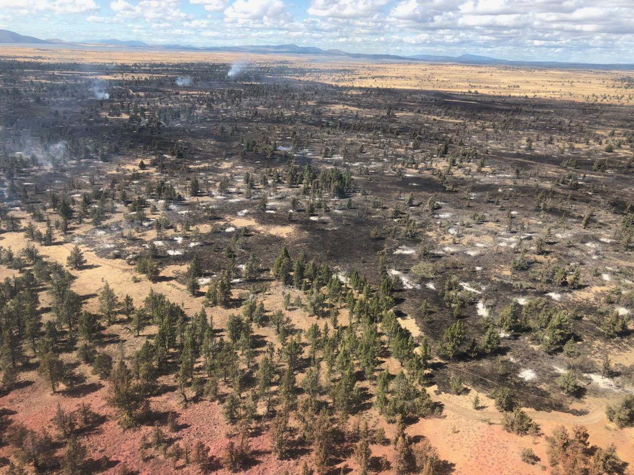 Ariel view of the Lone Fire.