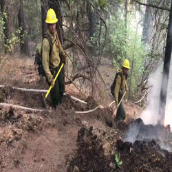 Two forest service firefighters move down a steep hillside along a fire line. Hose lays along the trail.