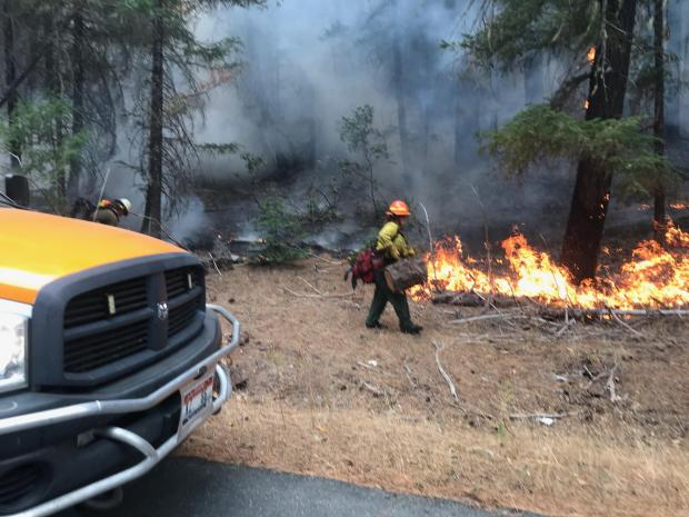 Firefighters are shown working to extinguish a fire along a road. A female firefighter can be seen carrying a section of a log.